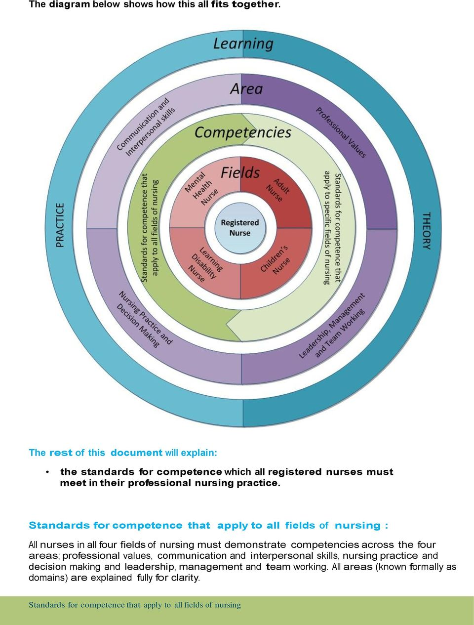 Standards for competence that apply to all fields of nursing : All nurses in all four fields of nursing must demonstrate competencies across the four areas;