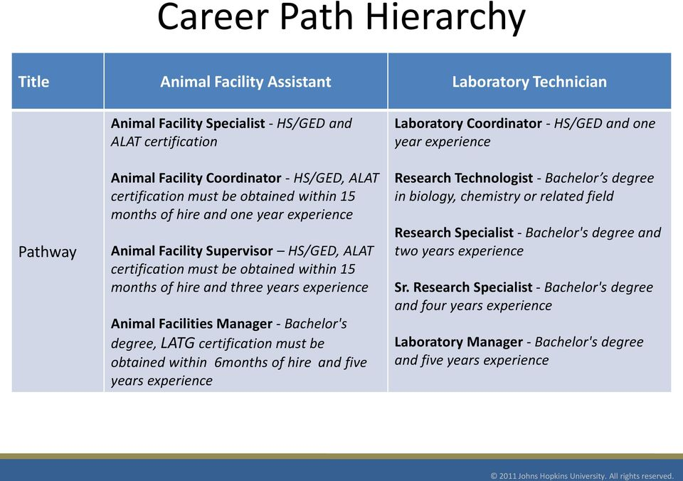 PATHWAYS TO HOPKINS Job Opportunities and Career Paths at The Johns ...