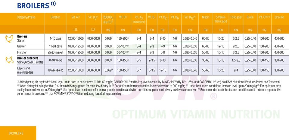 DSM Vitamin Supplementation Guidelines PDF