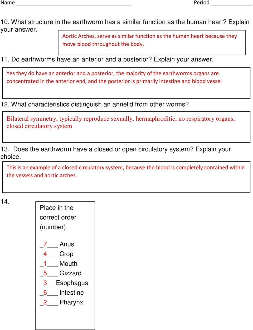 Earthworm Dissection Pdf