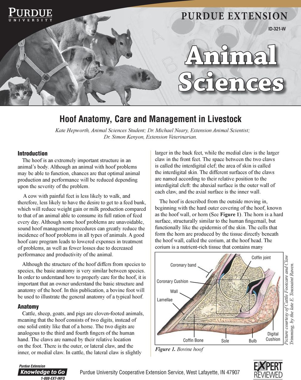 Animal Sciences Purdue Extension Hoof Anatomy Care And Management