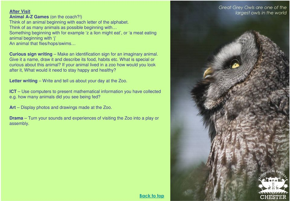 KS1 Animals and Us Information and guidance for teachers - PDF