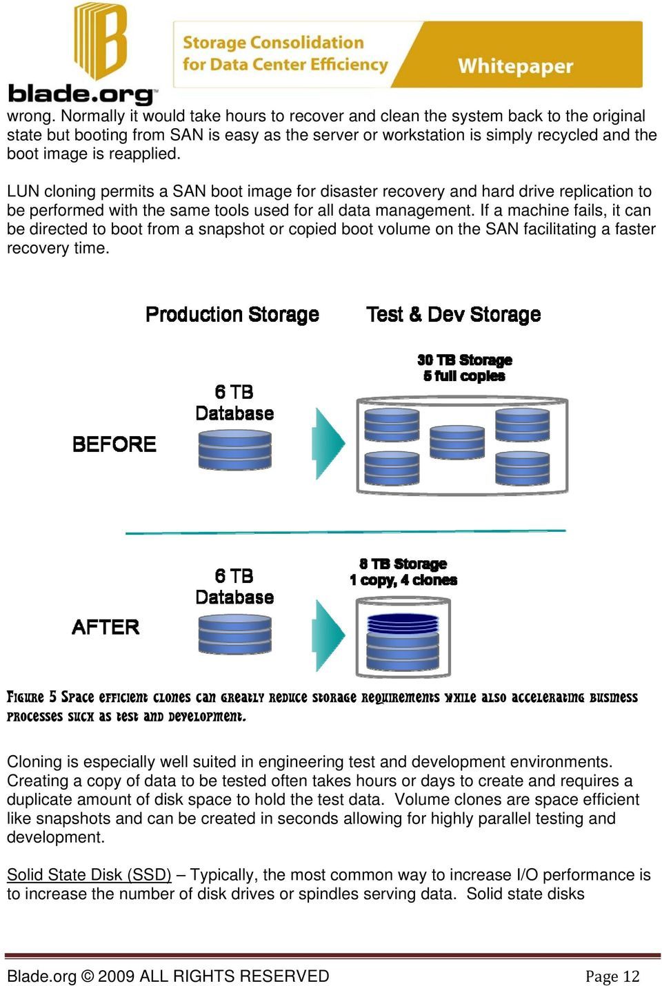LUN cloning permits a SAN boot image for disaster recovery and hard drive replication to be performed with the same tools used for all data management.
