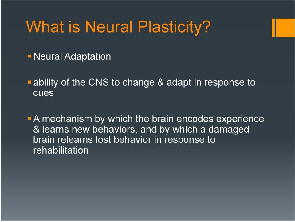 response to cues A mechanism by which the brain encodes