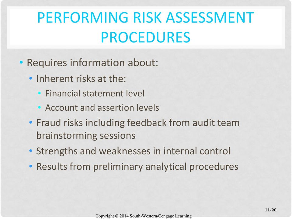 risks including feedback from audit team brainstorming sessions Strengths and