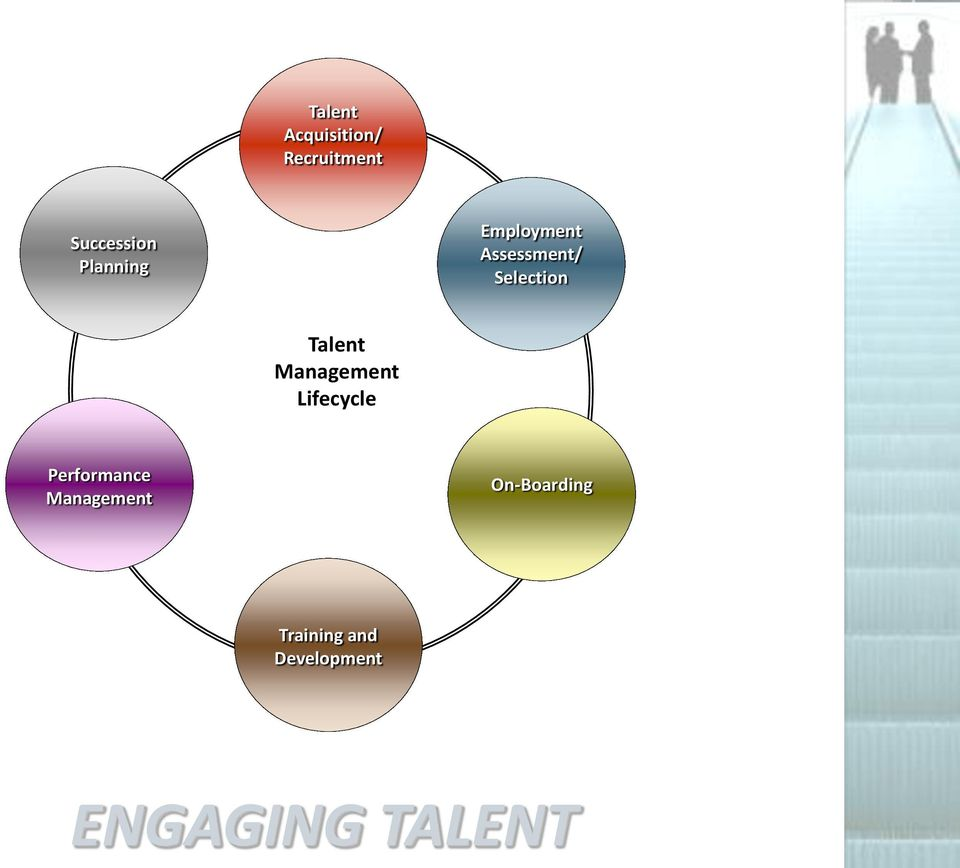 Talent Management Lifecycle Performance
