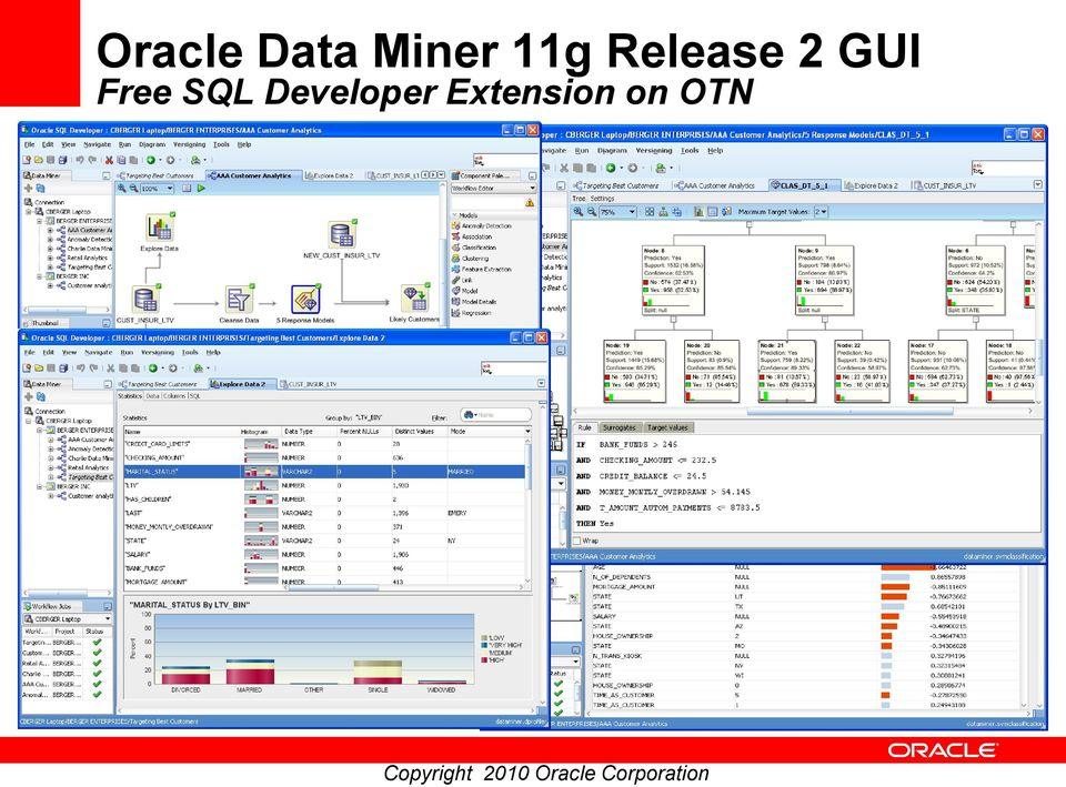 Oracle Data Mining In-Database Data Mining Made Easy! - PDF