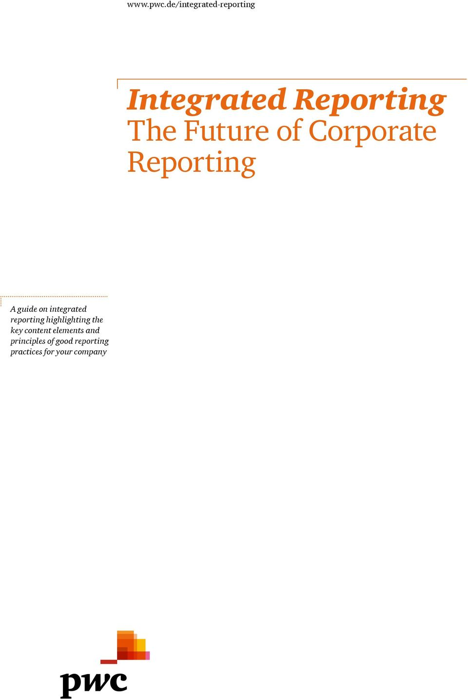 Integrated Reporting The Future of Corporate Reporting - PDF