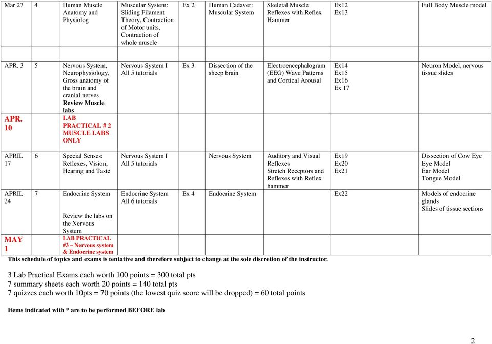 BSCI HUMAN ANATOMY AND PHYSIOLOGY Spring Semester 2012