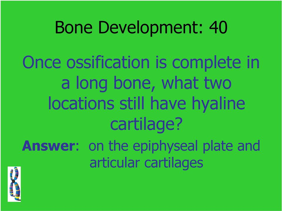 locations still have hyaline cartilage?