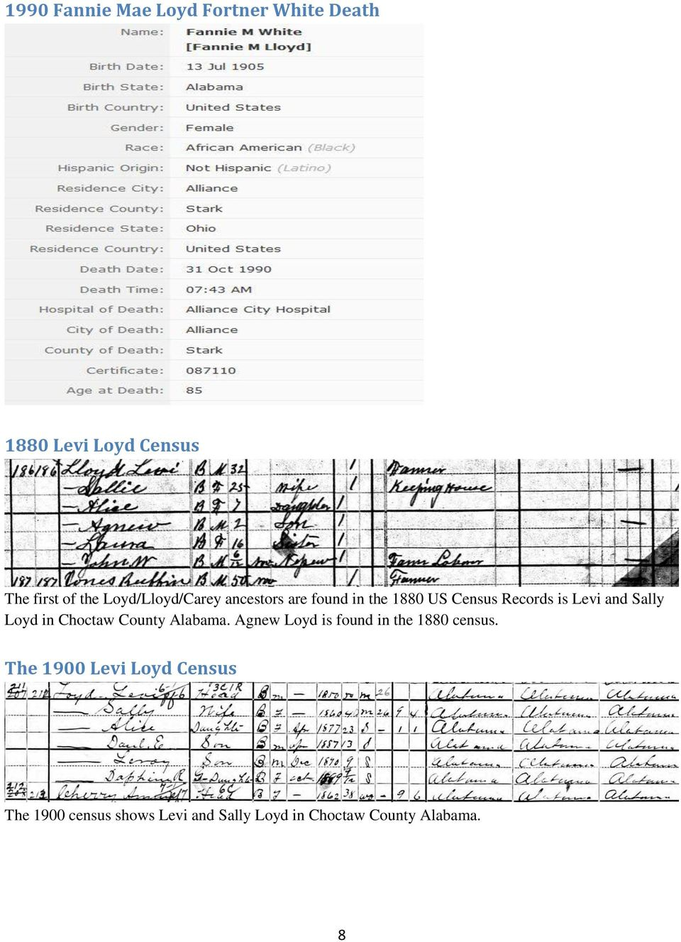 Sally Loyd in Choctaw County Alabama. Agnew Loyd is found in the 1880 census .