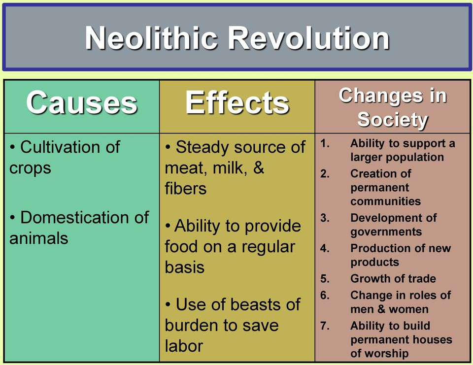 causes and effects of the neolithic revolution