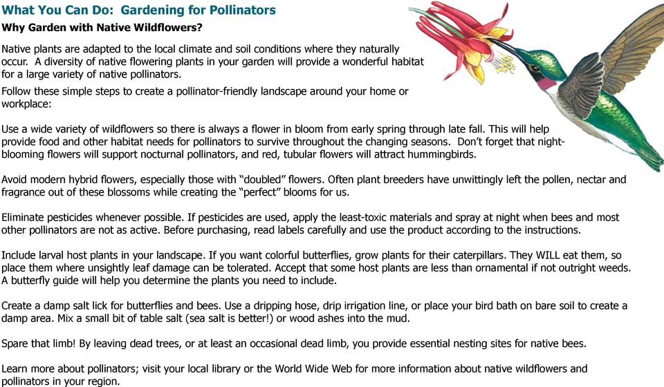 Follow these simple steps to create a pollinator-friendly landscape around your home or workplace: Use a wide variety of wildflowers so there is always a flower in bloom from early spring through