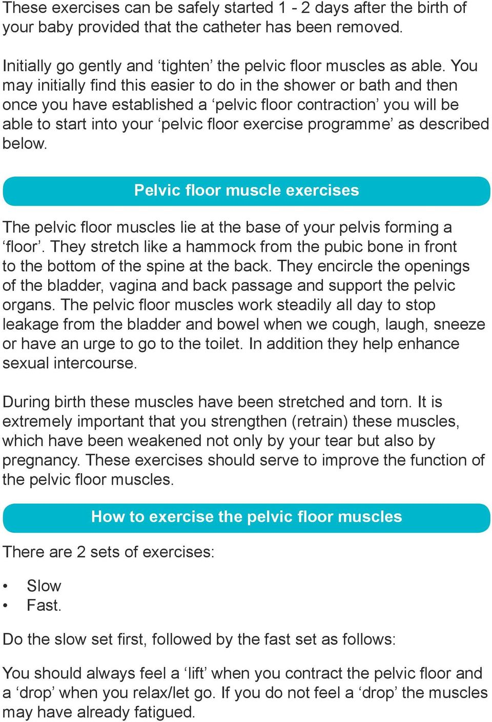 described below. Pelvic floor muscle exercises The pelvic floor muscles lie at the base of your pelvis forming a floor.