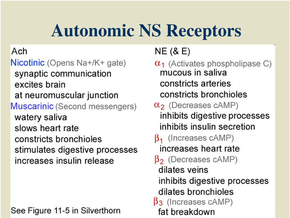 The Autonomic Nervous System and Toxic Syndromes - PDF Free