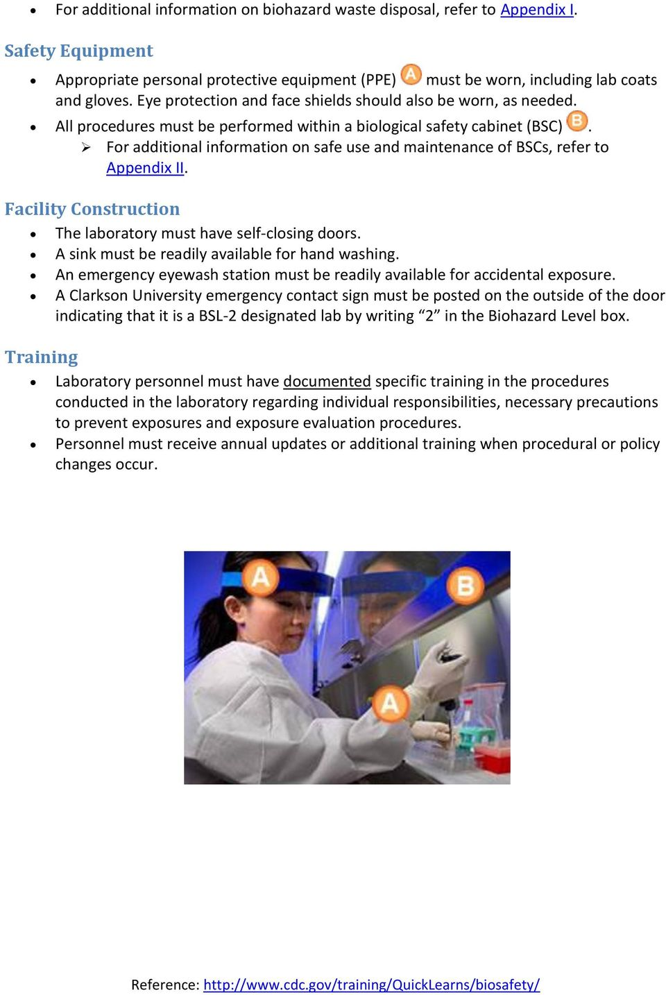 Biosafety Level 2 (BSL-2) Safety Guidelines - PDF