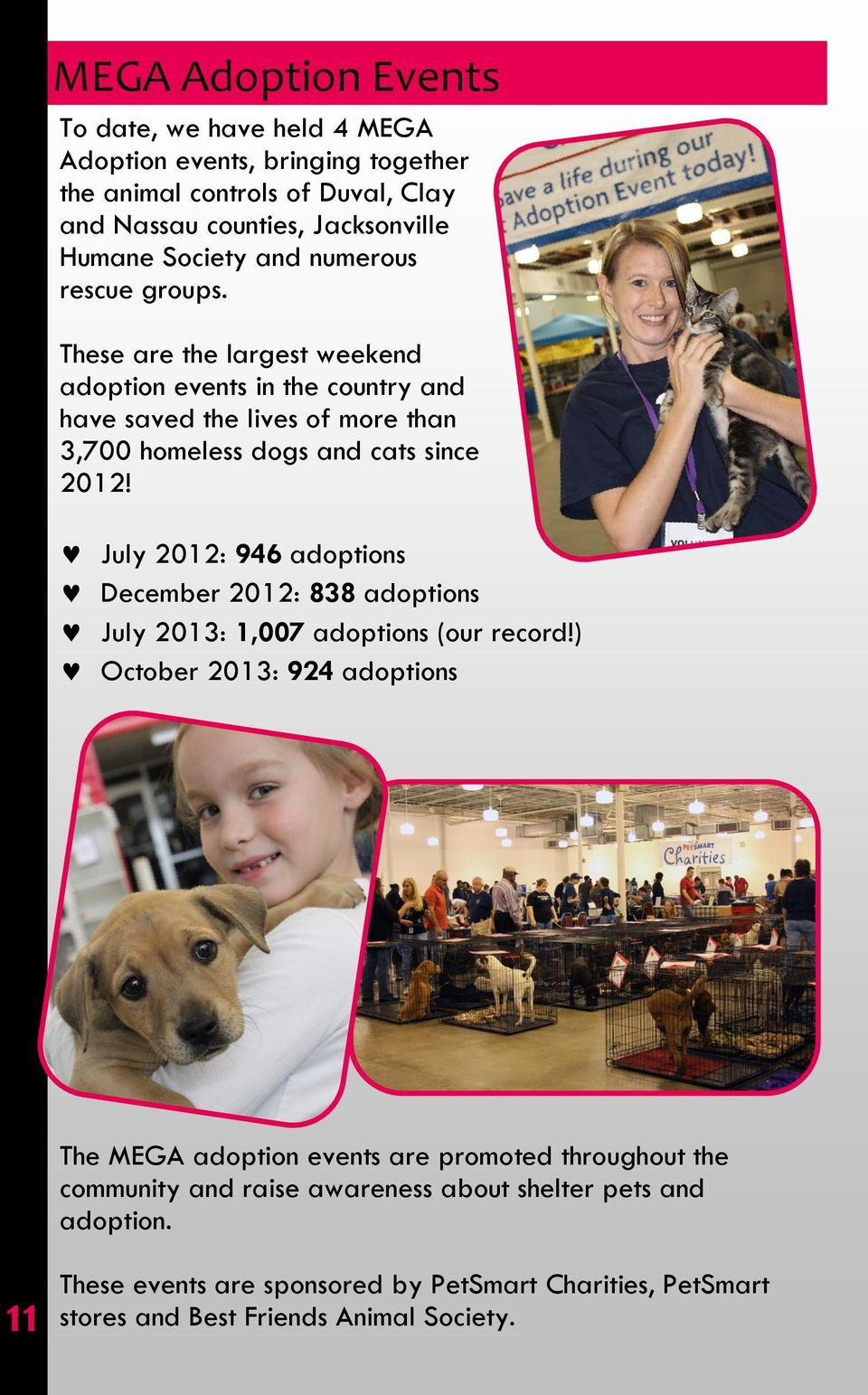 FIRST COAST NO MORE HOMELESS PETS ANNUAL REPORT - PDF