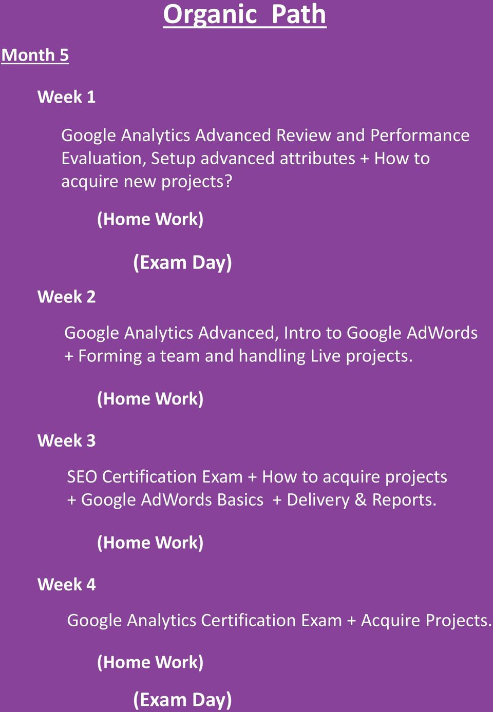 Week 2 Google Analytics Advanced, Intro to Google AdWords + Forming a team and handling Live projects.