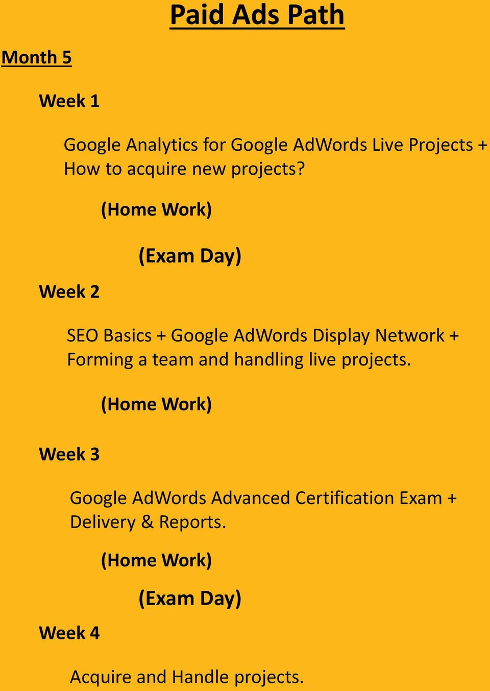 Week 2 SEO Basics + Google AdWords Display Network + Forming a team and