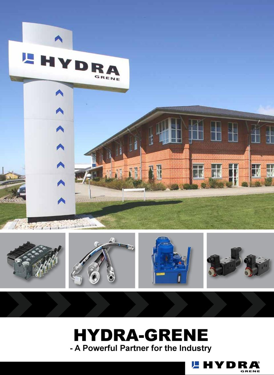 Hydra Grene A Powerful Partner For The Industry Pdf