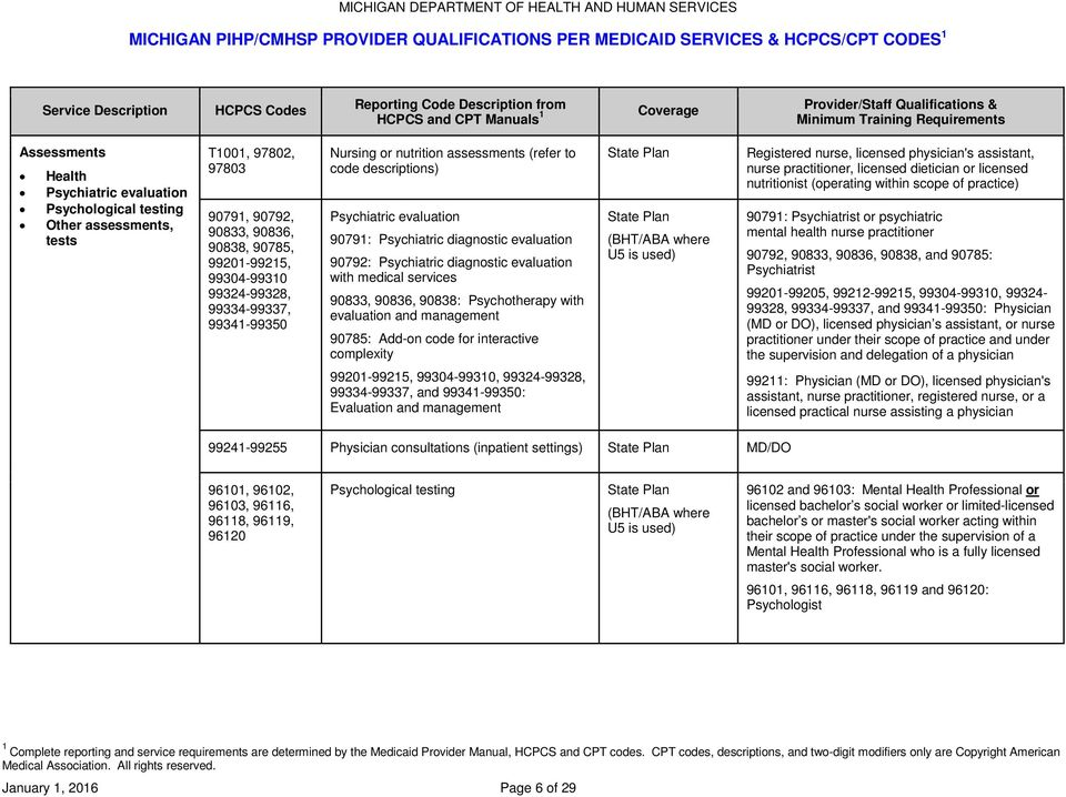 Michigan Pihp Cmhsp Provider Qualifications Per Medicaid Services