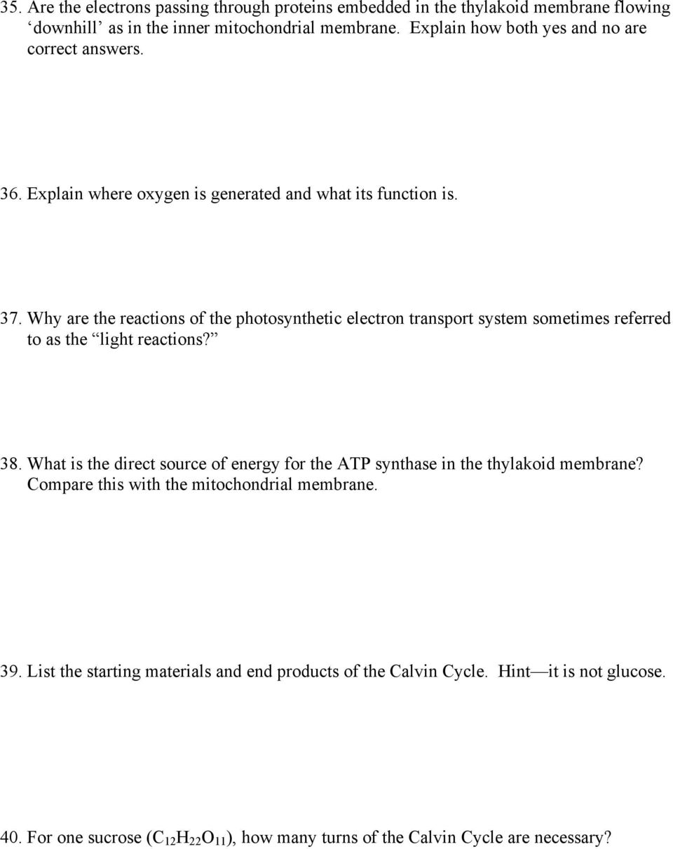 Why are the reactions of the photosynthetic electron transport system sometimes referred to as the light reactions? 38.