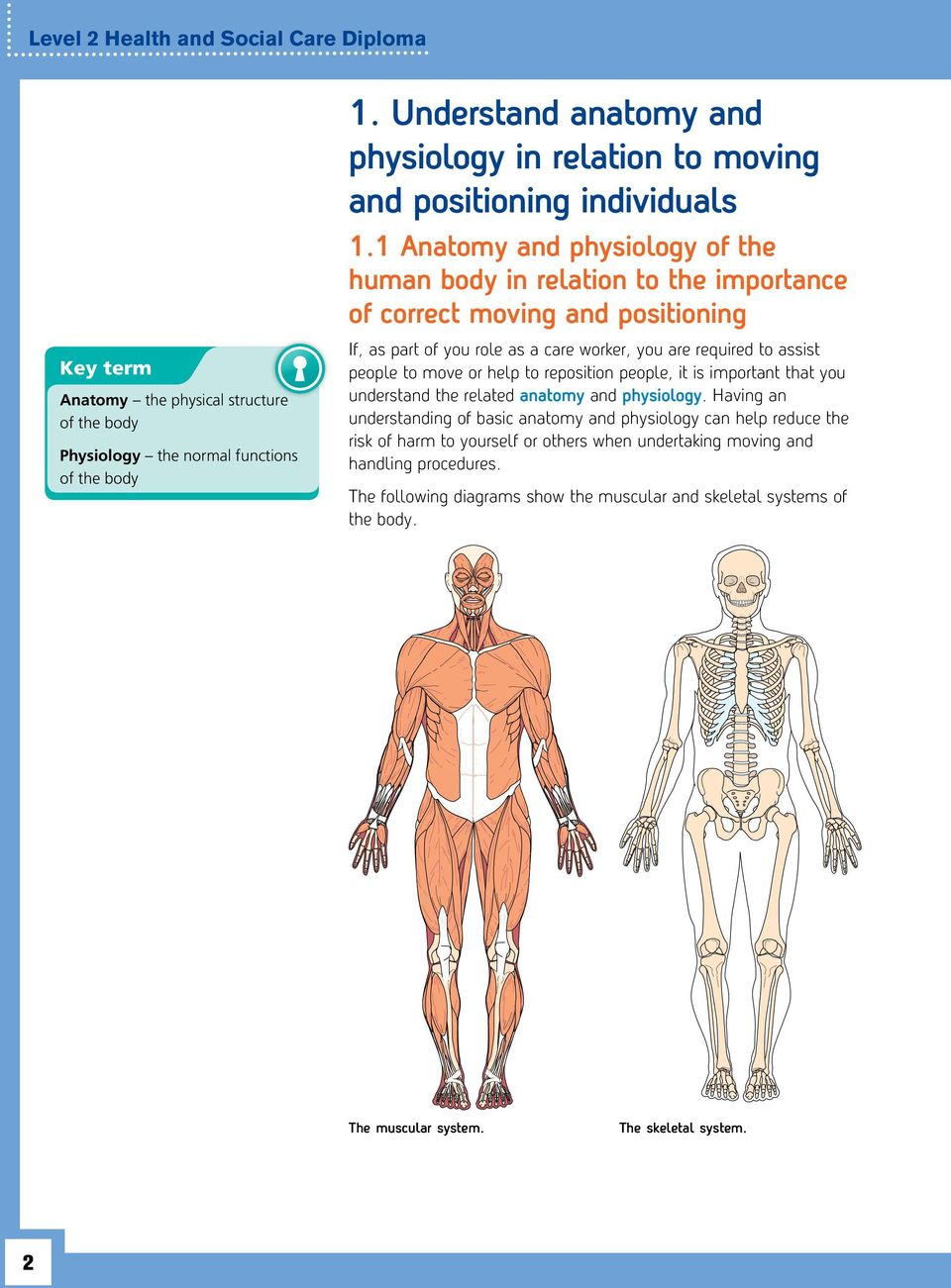 understand anatomy and physiology in relation to moving