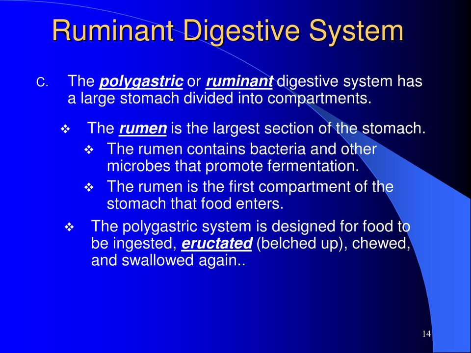 The rumen is the largest section of the stomach.
