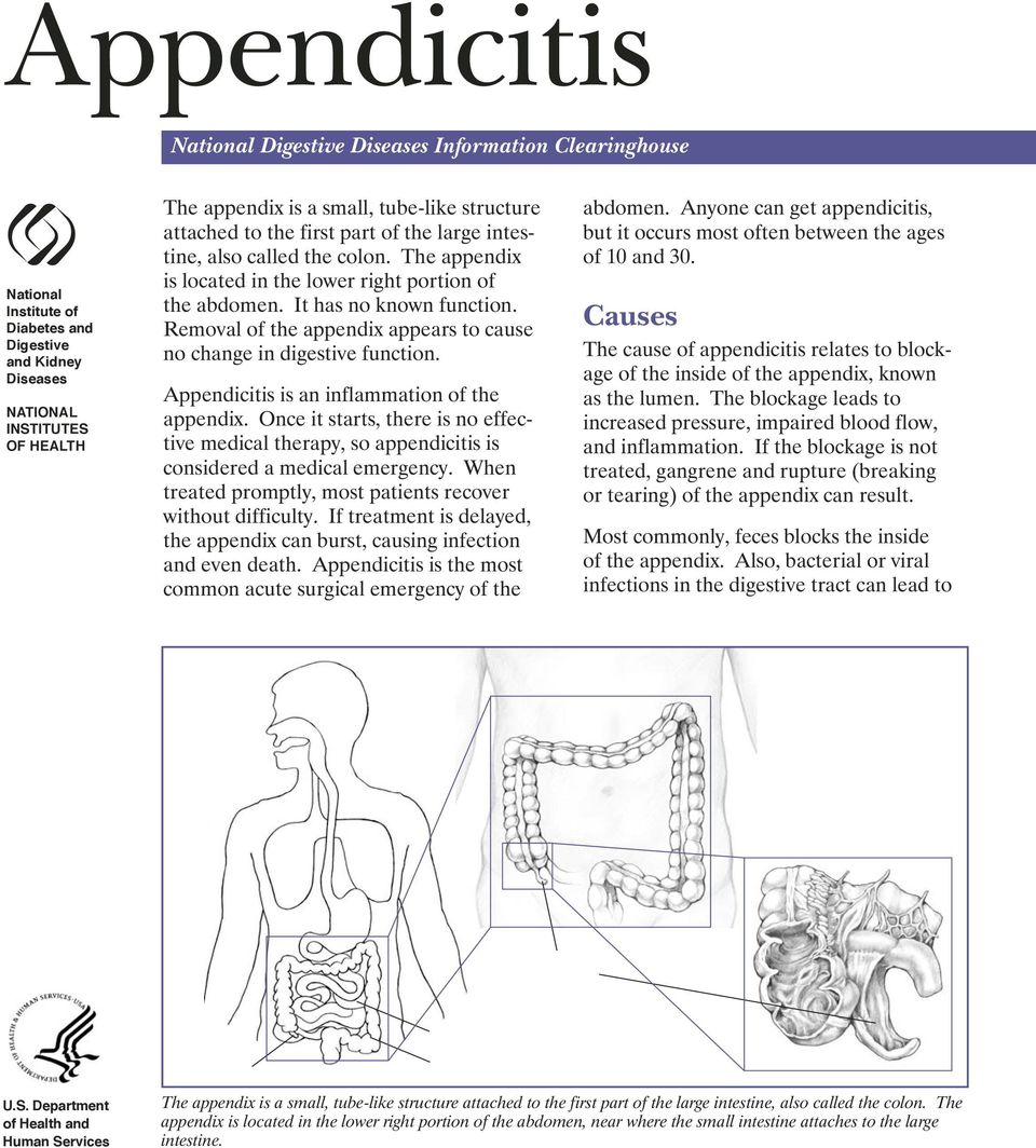 Appendicitis National Digestive Diseases Information Clearinghouse Pdf