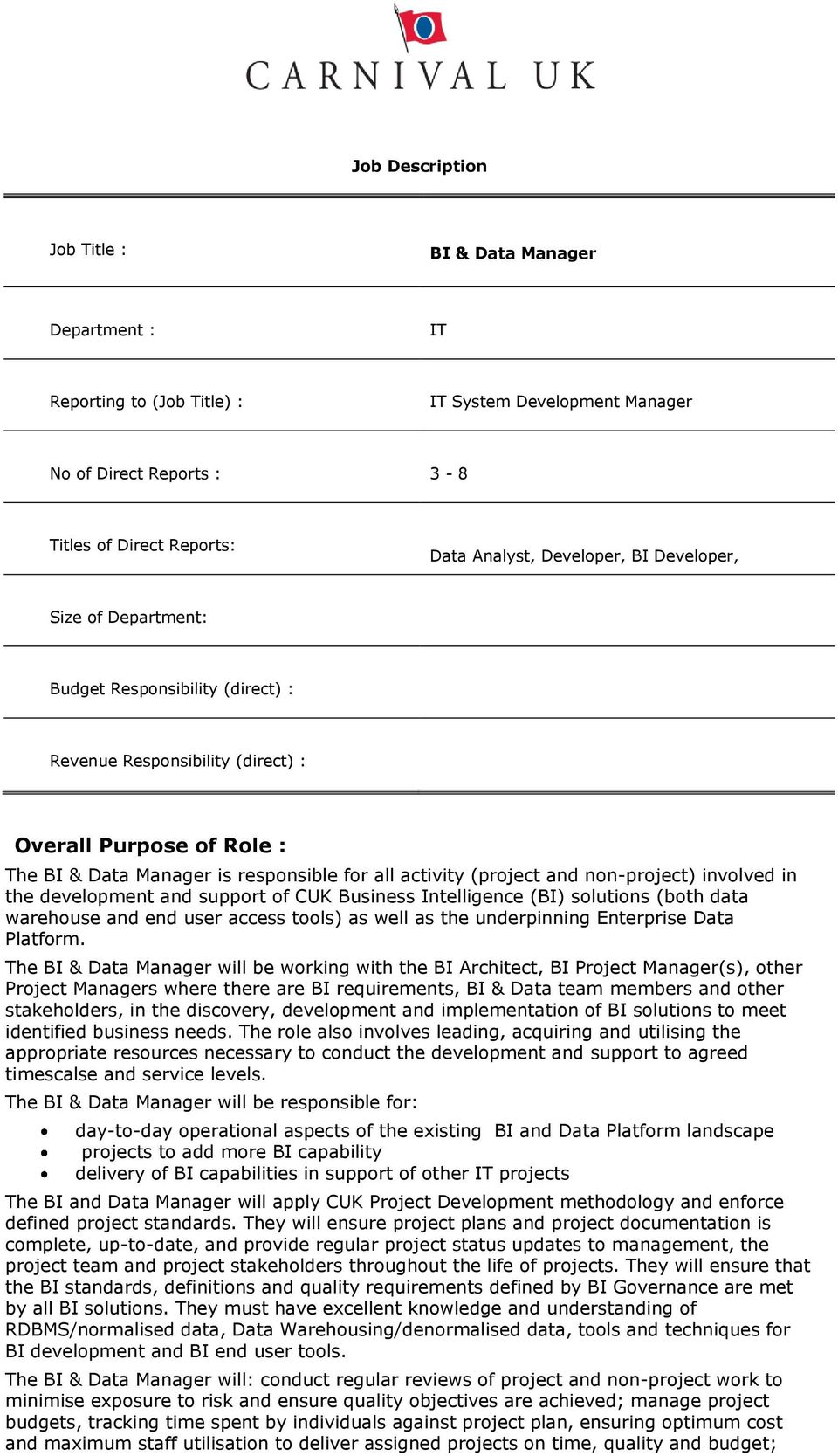 Job Description  BI & Data Manager  Titles of Direct Reports