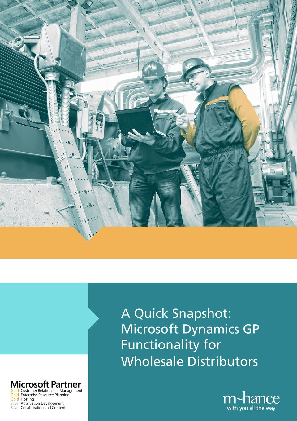 A Quick Snapshot: Microsoft Dynamics GP Functionality for