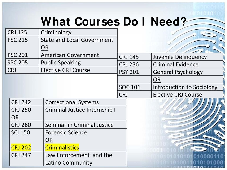 Criminal Justice Internship I Seminar in Criminal Justice Forensic Science Criminalistics Law Enforcement and the Latino