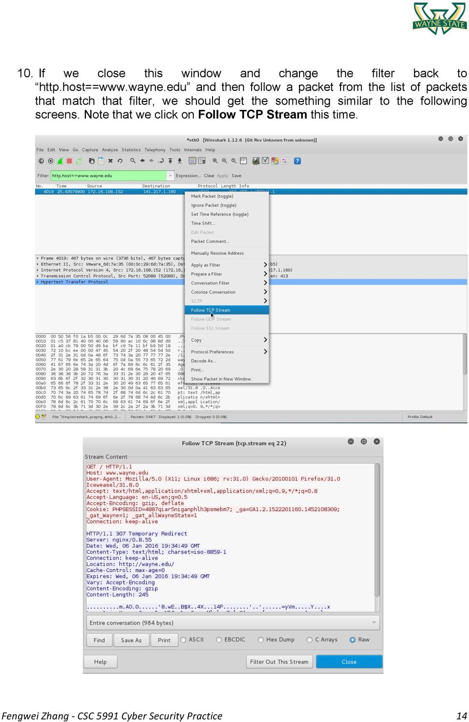Lab 1: Packet Sniffing and Wireshark - PDF
