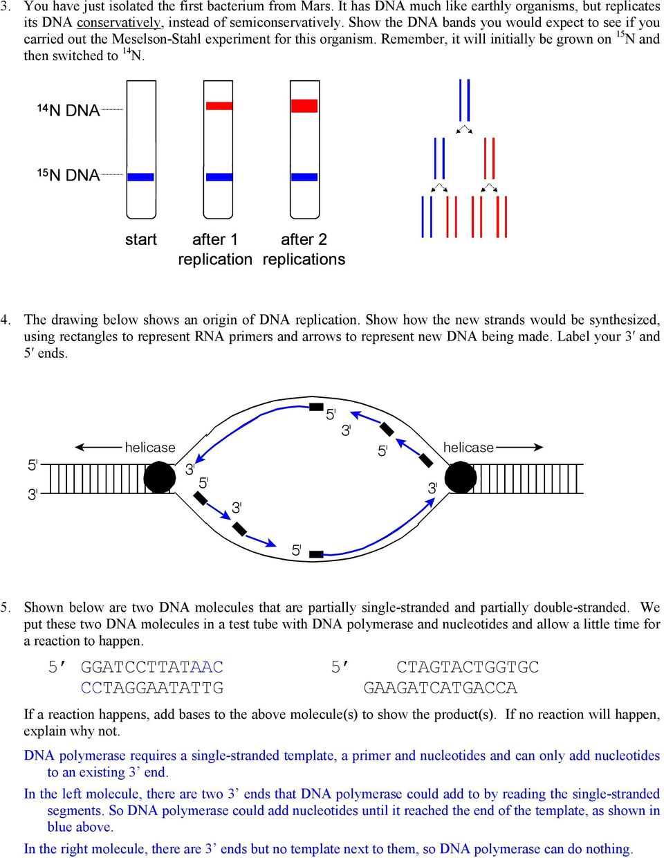 Bio 102 Practice Problems Chromosomes and DNA Replication - PDF