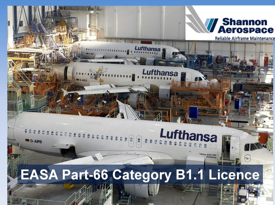 EASA Part-66 Category B1 1 Licence - PDF
