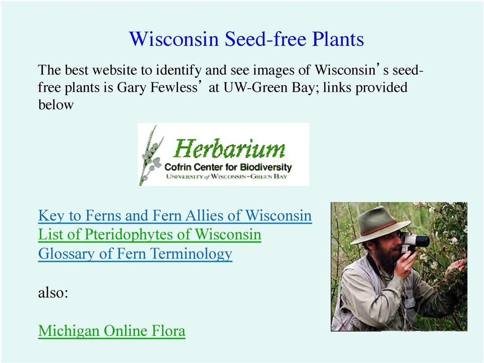 provided below Key to Ferns and Fern Allies of Wisconsin List of