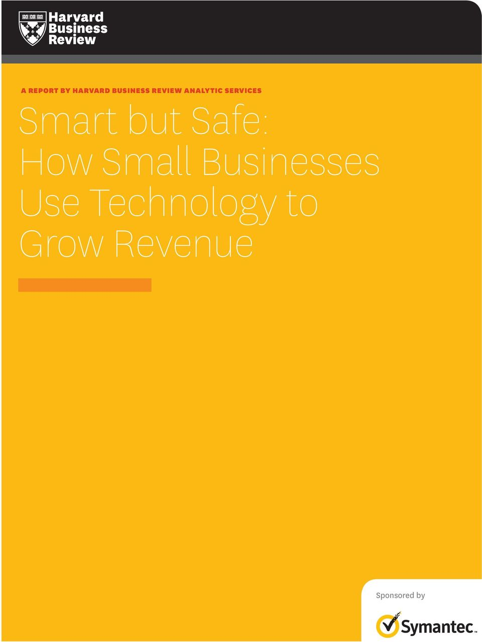 but Safe: How Small Businesses