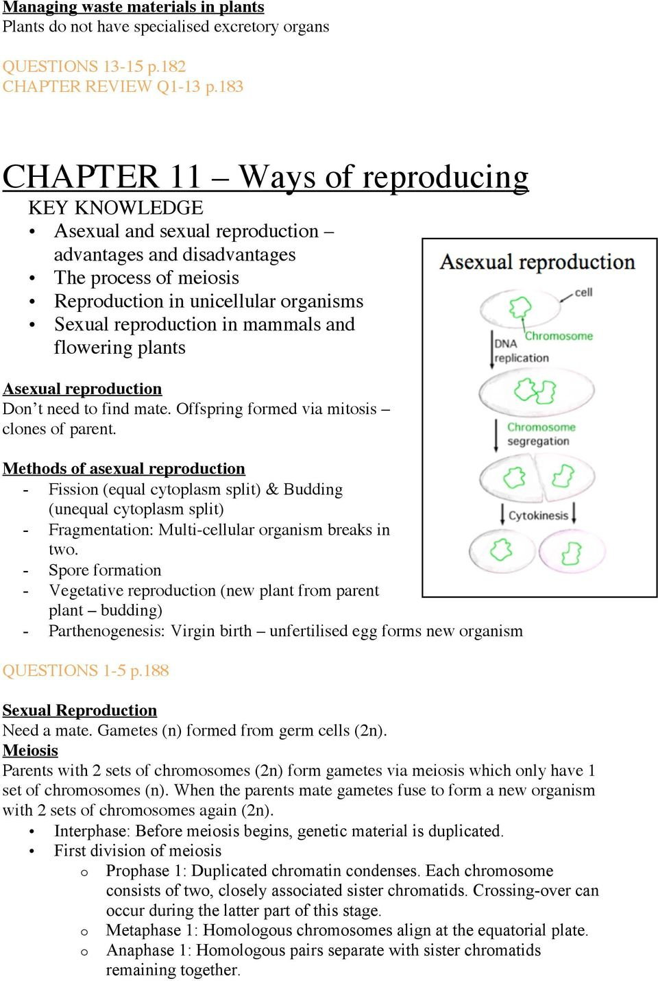 mitosis and asexual reproduction quiz