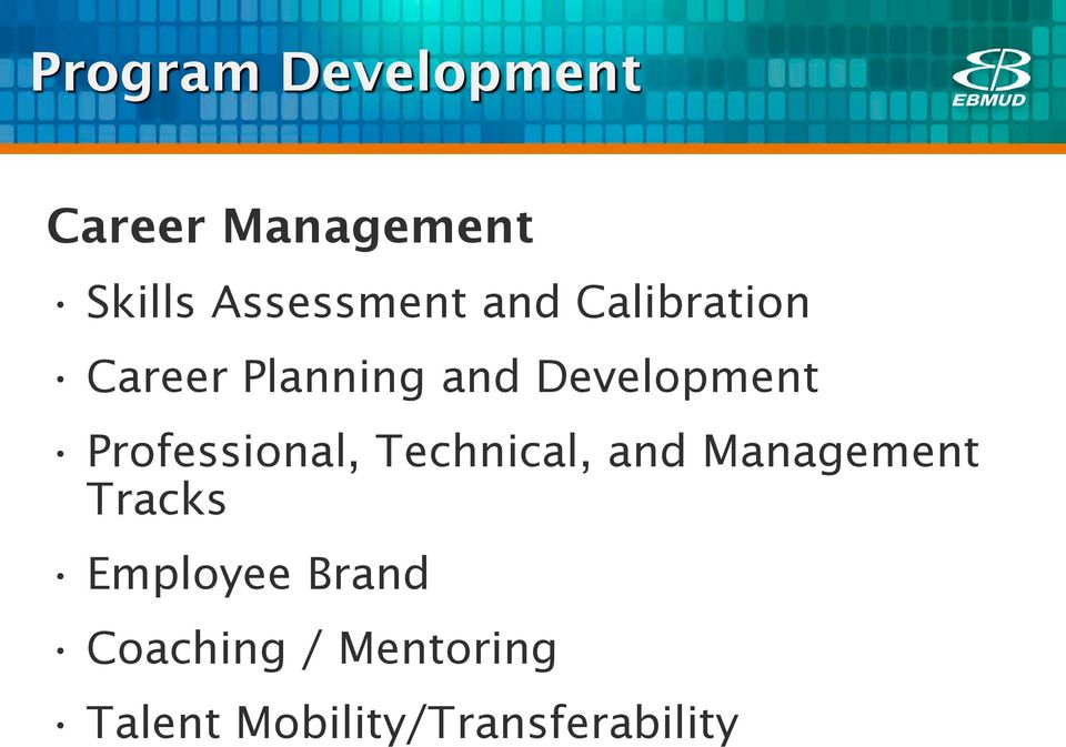 Development Professional, Technical, and Management