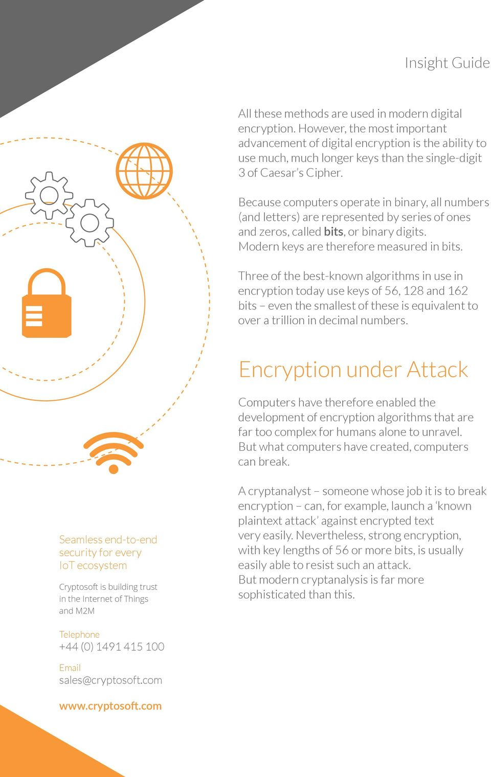 Insight Guide  Encryption: A Guide - PDF