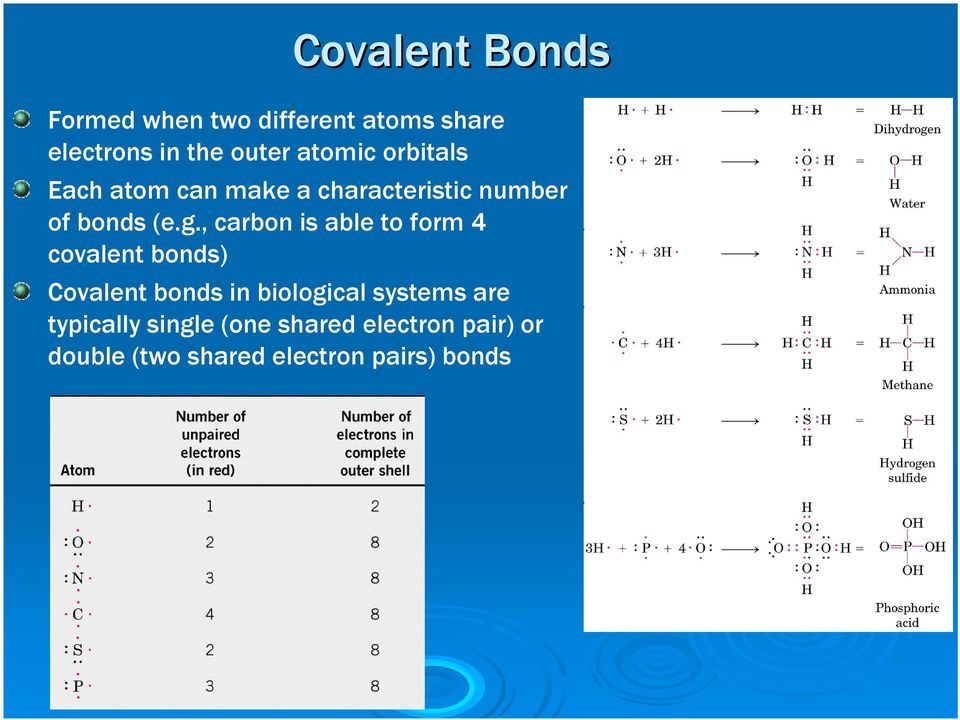 , carbon is able to form 4 covalent bonds) Covalent bonds in biological systems