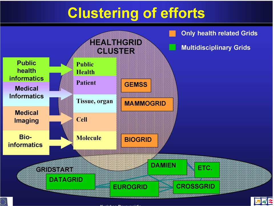 Cell GEMSS MAMMOGRID Only health related Grids Multidisciplinary Grids