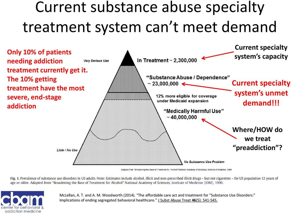 system s unmet demand!!! Where/HOW do we treat preaddiction? McLellan, A. T. and A. M. Woodworth (2014).
