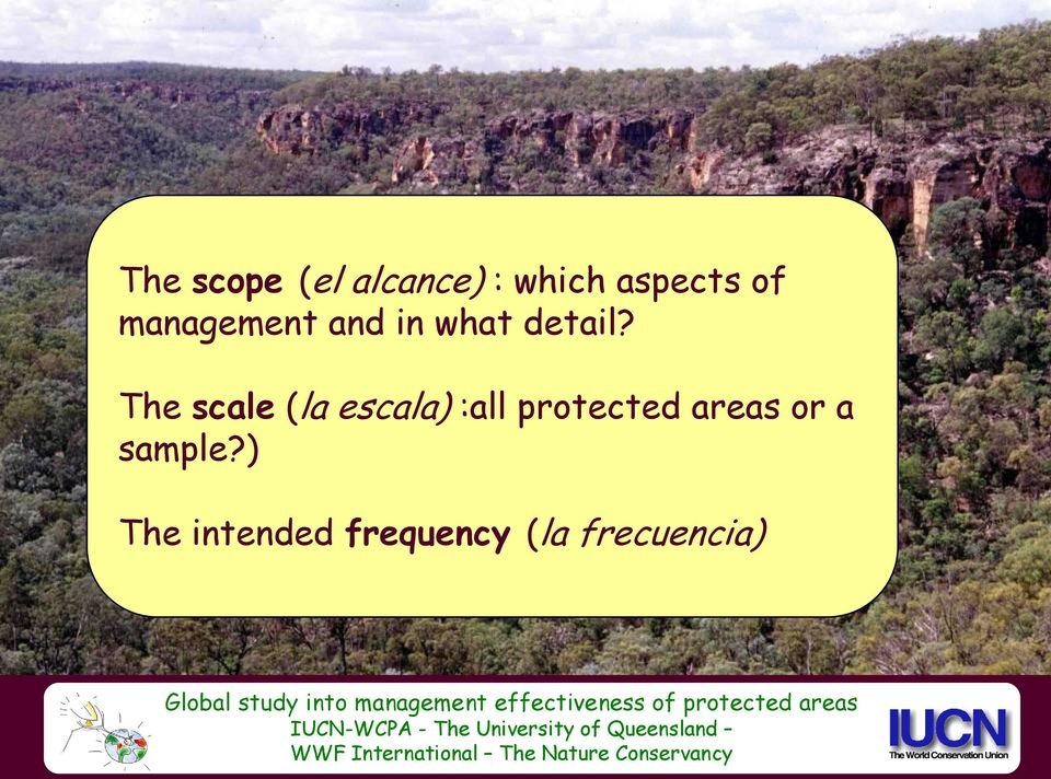 The scale (la escala) :all protected