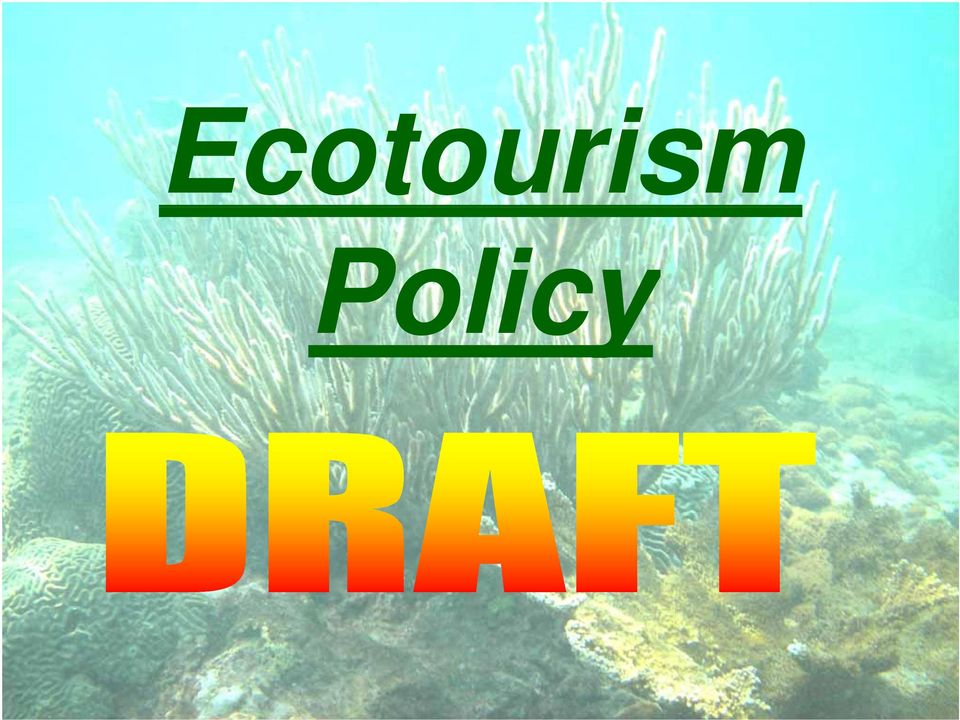 Ecotourism in T&T  potential has never been actualized  - PDF
