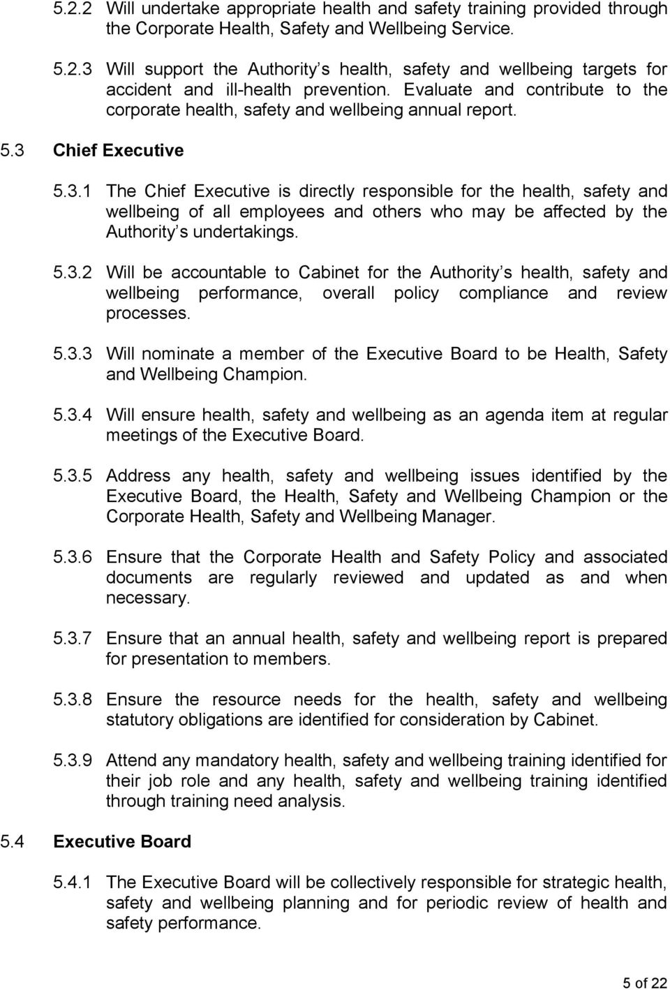 Chief Executive 5.3.1 The Chief Executive is directly responsible for the health, safety and wellbeing of all employees and others who may be affected by the Authority s undertakings. 5.3.2 Will be accountable to Cabinet for the Authority s health, safety and wellbeing performance, overall policy compliance and review processes.