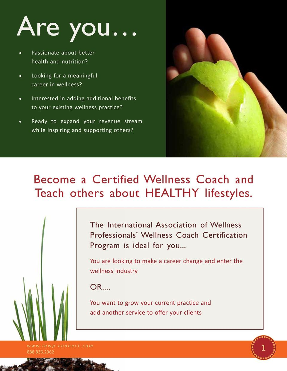 Wellness Coach Certification Program Teach Inspire Others To Be