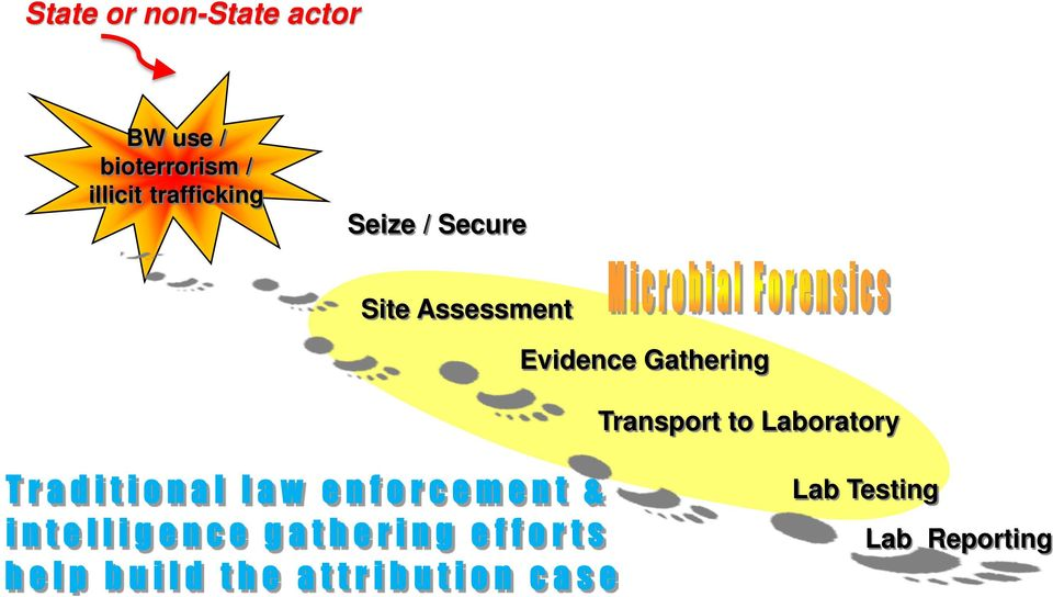 / Secure Site Assessment Evidence