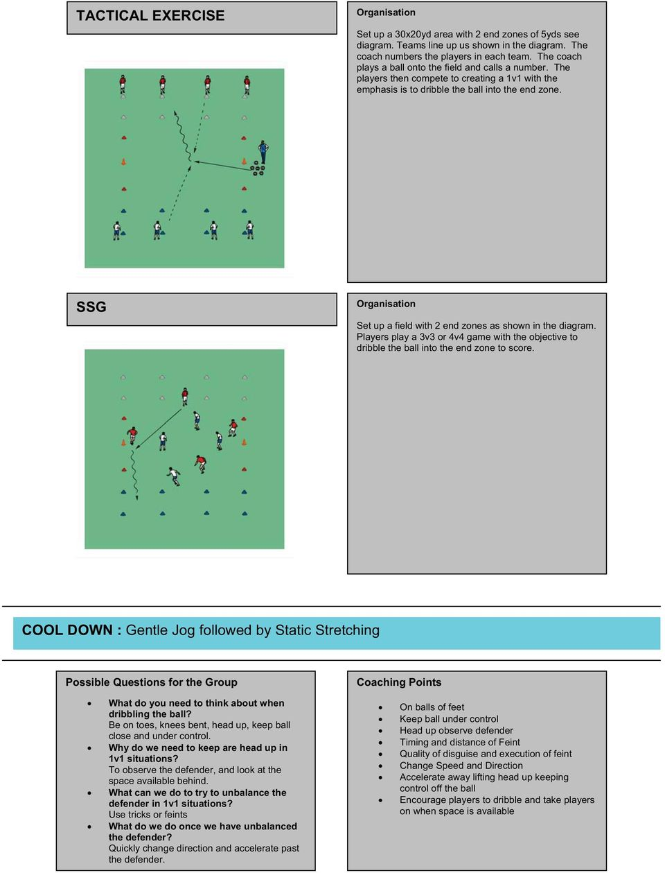 SSG Set up a field with 2 end zones as shown in the diagram. Players play a 3v3 or 4v4 game with the objective to dribble the ball into the end zone to score.