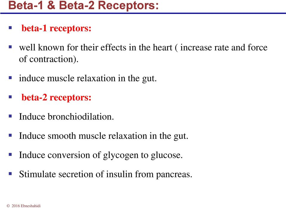 beta-2 receptors: Induce bronchiodilation. Induce smooth muscle relaxation in the gut.